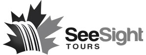 Seesight Tours client wink